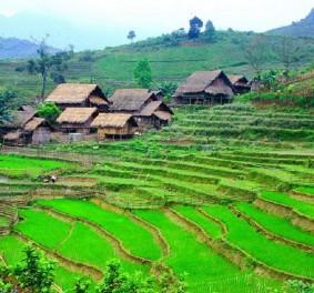 Un séjour inoubliable au Vietnam, grâce à eux